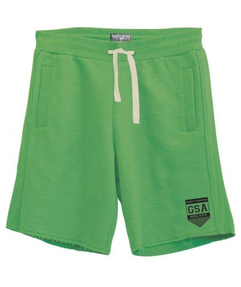 GSA MEN'S GLORY & HERITAGE EMBROIDERED SHORTS GREEN
