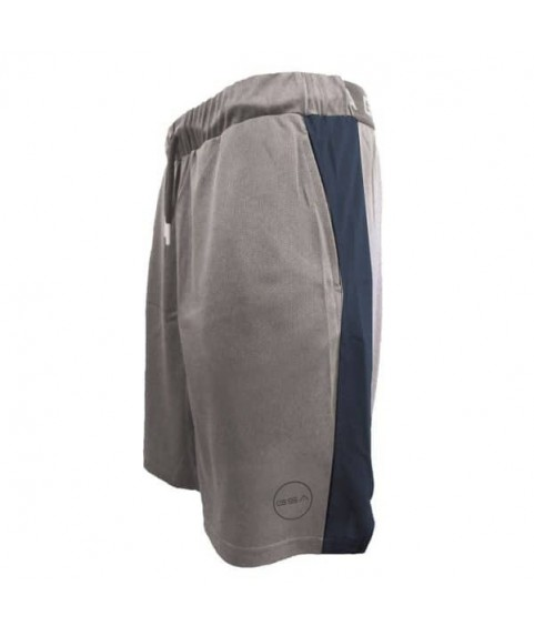 GSA AERO Performance Shorts FROST GRAY